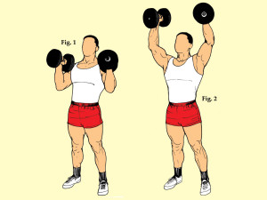 Standing Palms In Dumbbell Press