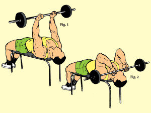 Lying Supine Close Grip Barbell Triceps Curl to Chin