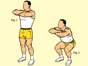 Flat Footed Medium Stance Free Hand Squat