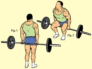 Flat Footed Close Stance Barbell Hack Squat