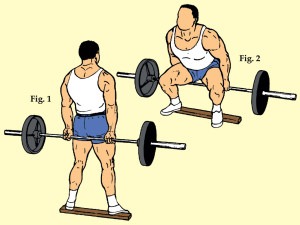Heels Elevated Wide Stance Barbell Hack Squat