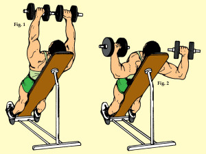 Incline Lateral