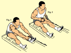 Seated Two Arm Low Lat Pull-In