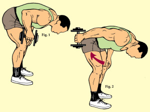Standing Bent Over One Dumbbell Triceps Extension